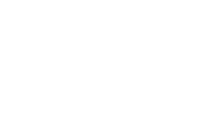 Bridget-Singh-DDS-logo-reversed